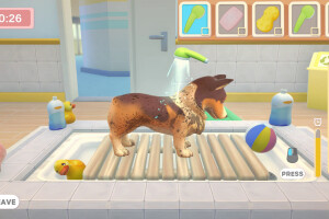 My Universe — Pet Clinic Cats & Dogs