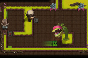 Dungeon Slime 2: Puzzle in the Dark Forest